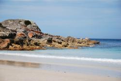 tasmanie-boat-harbour-beach-2-1.jpg